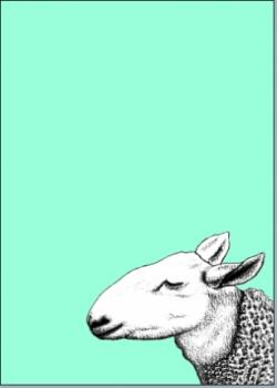 Schaf blau
